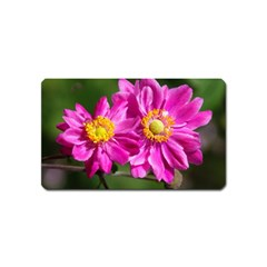 Flower Magnet (Name Card)