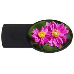 Flower 2gb Usb Flash Drive (oval)