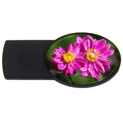Flower 1GB USB Flash Drive (Oval)