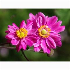 Flower Canvas 12  X 16  (unframed)