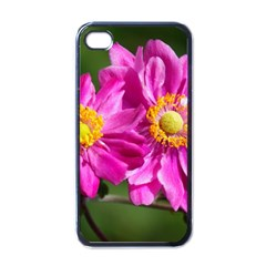 Flower Apple iPhone 4 Case (Black)