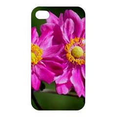 Flower Apple iPhone 4/4S Premium Hardshell Case