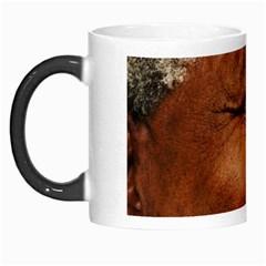 Mandela Morph Mug
