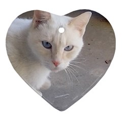 Beebee On Concrete Heart Ornament (Two Sides)