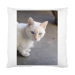 Beebee On Concrete Cushion Case (Single Sided)