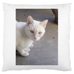 Beebee On Concrete Large Cushion Case (Single Sided)