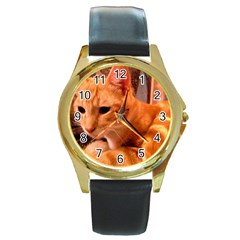 Liam The Beaut Round Leather Watch (Gold Rim)