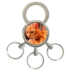 Liam The Beaut 3 Ring Key Chain