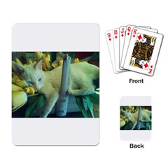 Beebee Tulips Playing Cards Single Design