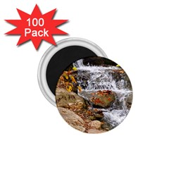Waterfall 1.75  Button Magnet (100 pack)