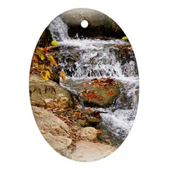 Waterfall Oval Ornament (Two Sides)
