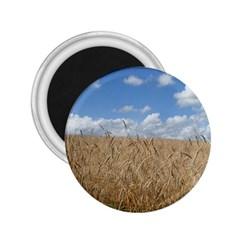 Gettysburg 1 068 2 25  Button Magnet