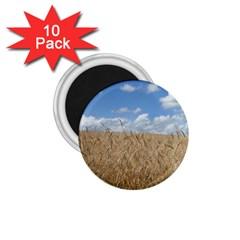 Gettysburg 1 068 1 75  Button Magnet (10 Pack)