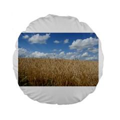 Gettysburg 1 068 15  Premium Round Cushion