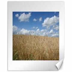 Grain and Sky Canvas 11  x 14  (Unframed)