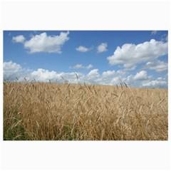 Grain and Sky Canvas 12  x 12  (Unframed)