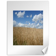 Grain and Sky Canvas 12  x 16  (Unframed)
