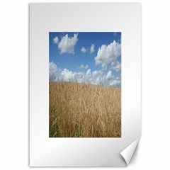 Grain and Sky Canvas 12  x 18  (Unframed)