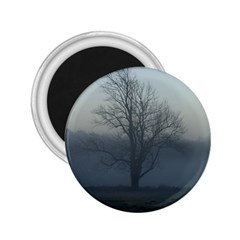 Foggy Tree 2.25  Button Magnet