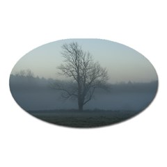 Foggy Tree Magnet (oval)