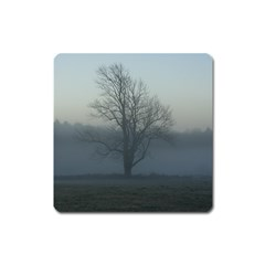 Foggy Tree Magnet (square)