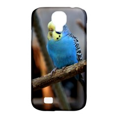 Sweet Budgie Samsung Galaxy S4 Classic Hardshell Case (PC+Silicone)