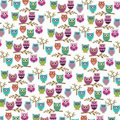 Happy Owls Canvas 12  x 12  (Unframed)