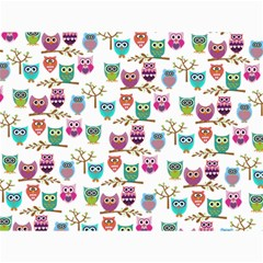 Happy Owls Canvas 12  x 16  (Unframed)
