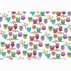 Happy Owls Canvas 20  x 30  (Unframed)