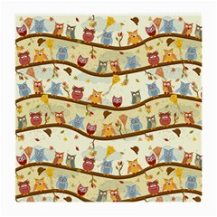 Autumn Owls Glasses Cloth (medium, Two Sided)