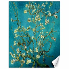 Vincent Van Gogh Blossoming Almond Tree Canvas 18  x 24  (Unframed)