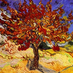 Vincent Van Gogh Mulberry Tree Canvas 16  x 16  (Unframed)