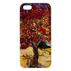 Vincent Van Gogh Mulberry Tree iPhone 5S Premium Hardshell Case