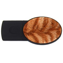 Cat Coat 1 1GB USB Flash Drive (Oval)