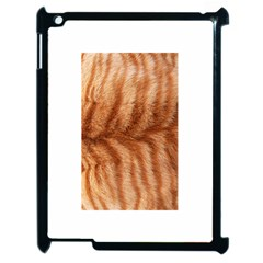 Cat Coat 1 Apple iPad 2 Case (Black)
