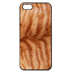 Cat Coat 1 Apple iPhone 5 Seamless Case (Black)