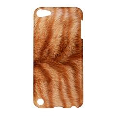 Cat Coat 1 Apple iPod Touch 5 Hardshell Case