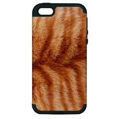 Cat Coat 1 Apple Iphone 5 Hardshell Case (pc+silicone)