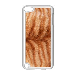 Cat Coat 1 Apple Ipod Touch 5 Case (white)