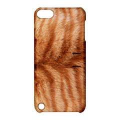 Cat Coat 1 Apple Ipod Touch 5 Hardshell Case With Stand