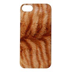 Cat Coat 1 Apple iPhone 5S Hardshell Case