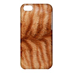 Cat Coat 1 Apple Iphone 5c Hardshell Case