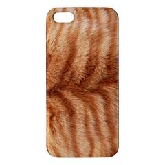 Cat Coat 1 iPhone 5S Premium Hardshell Case