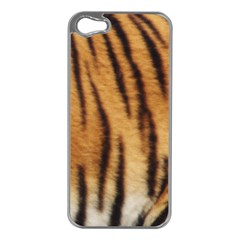 Tiger Coat2 Apple Iphone 5 Case (silver)