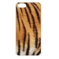 Tiger Coat2 Apple iPhone 5 Seamless Case (White)