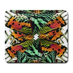 Butterfly Art Green & Orange Large Mouse Pad (rectangle)