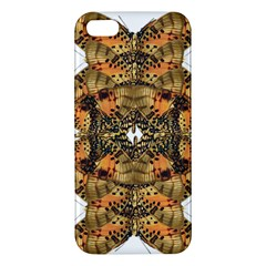 Butterfly Art Tan & Orange iPhone 5S Premium Hardshell Case