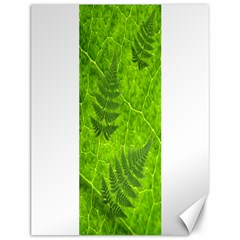 Leaf & Leaves Canvas 12  x 16  (Unframed)