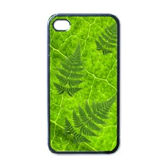 Leaf & Leaves Apple iPhone 4 Case (Black)
