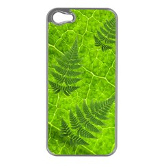 Leaf & Leaves Apple iPhone 5 Case (Silver)